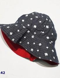Mũ vành