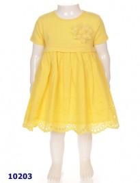 Đầm thun Plus