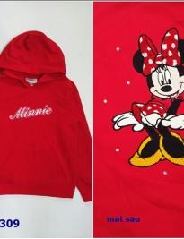 Hoodie Disney